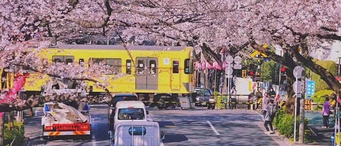 旅遊部落客推薦7款日本打工度假必備用品