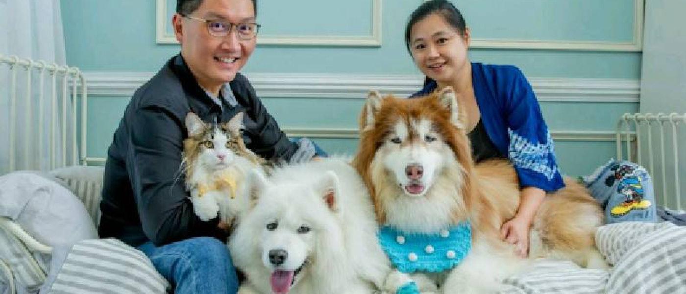 寵物達人推薦8款大型犬適用居家寵物用品