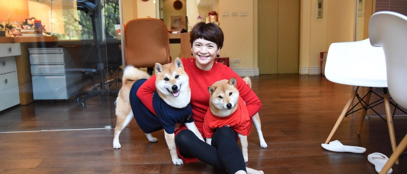 寵物達人推薦6款柴犬飼養新手必備用品