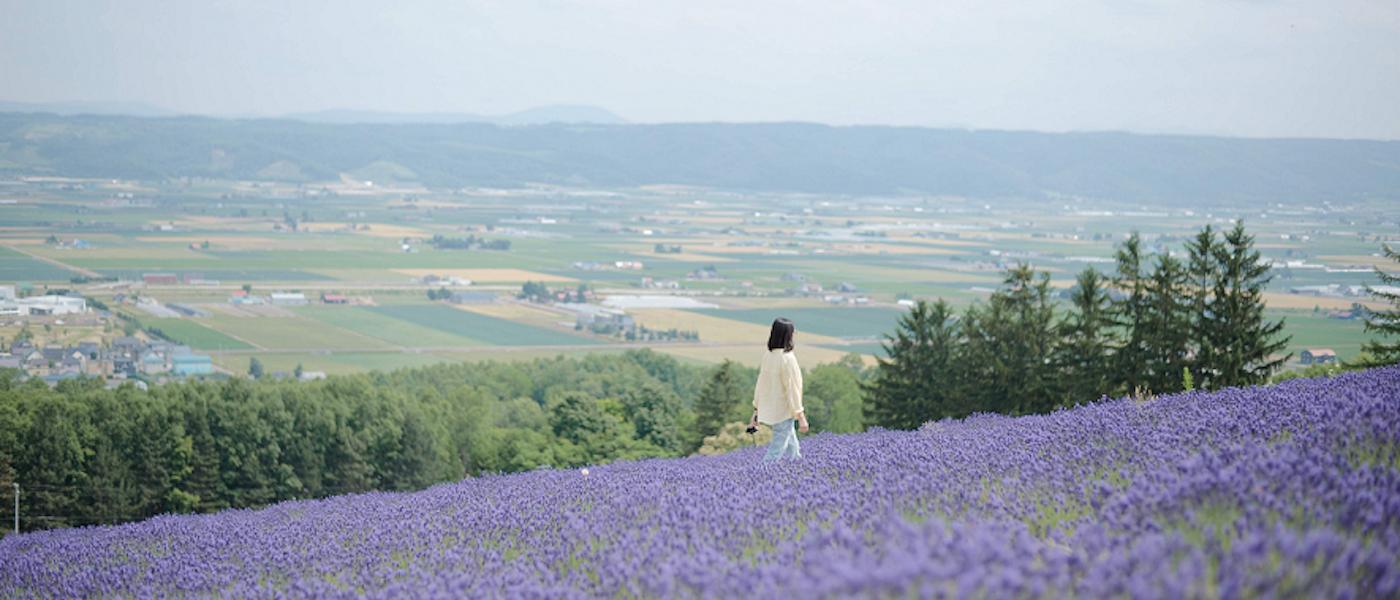 在日經驗者推薦8款北海道必買伴手禮