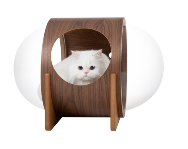 MYZOO ALPHA 貓屋 1
