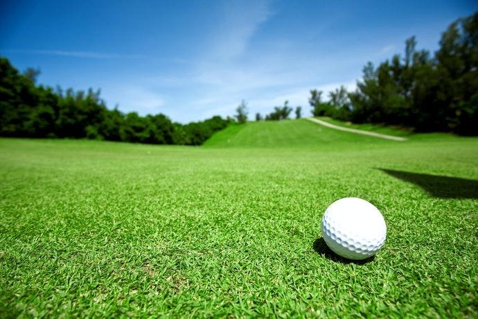 硬球(DISTANCE):飛行距離遠且滾動速度快,適合初學者或業餘好手