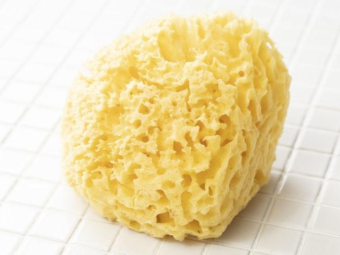 天然海綿:具保濕力且易於起泡