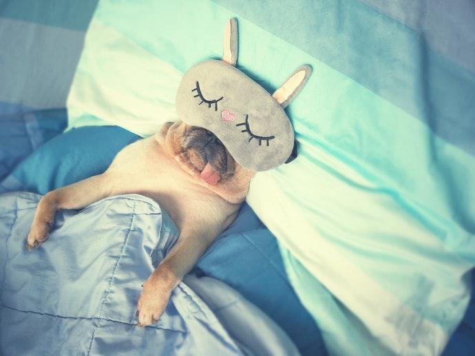 標準型:適合睡相好的使用者