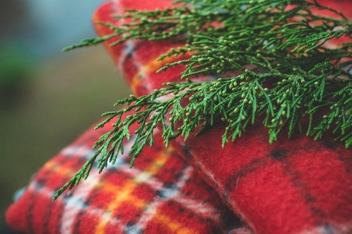 法蘭絨:細緻柔順,帶有迷人光澤感