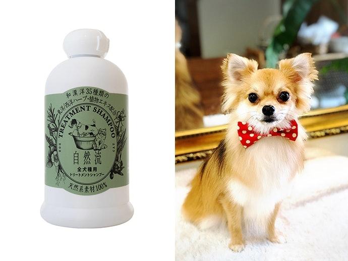 【評比結果】全數商品的洗淨力皆表現出色,沙龍級犬用洗髮精滿意度最高