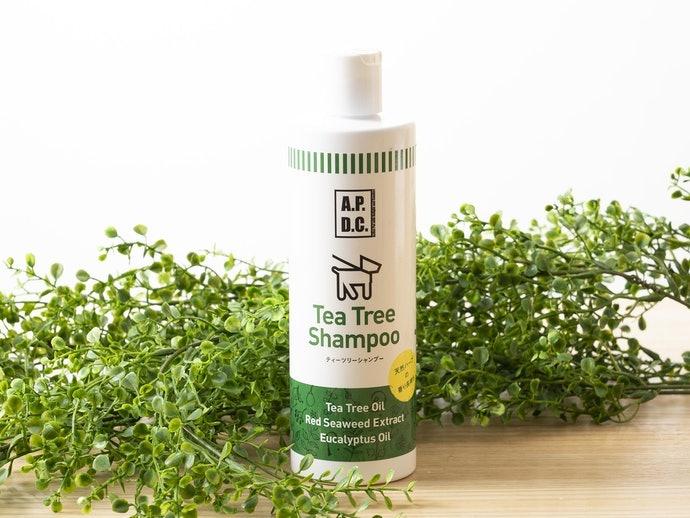 茶樹、檜葉等成分:給予清涼感