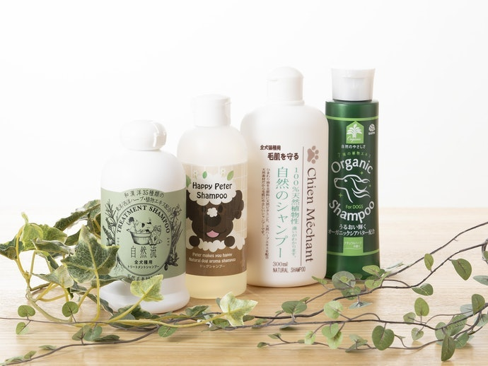 過敏或肌膚過於乾燥,請避免使用添加硫磺、草本精華的洗毛精