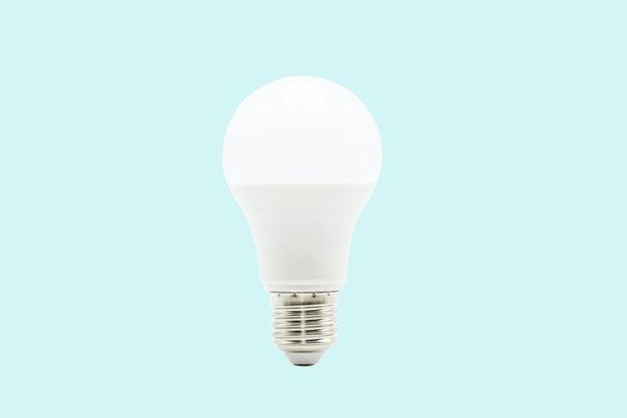 燈泡型:進階飼養者的理想選擇