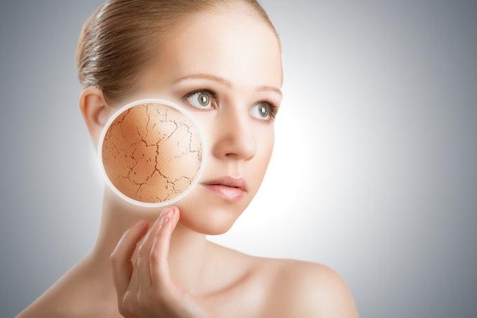 肌膚乾燥、油水不平衡:留意保濕成分