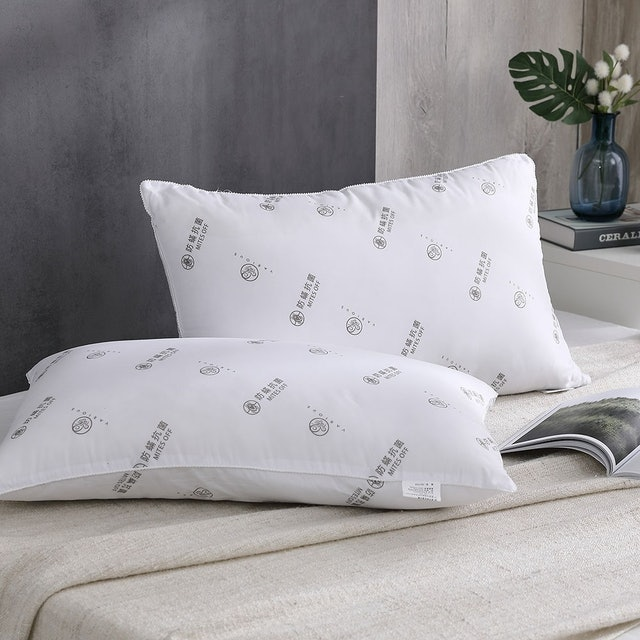 岱思夢 星級銀離子抗菌枕 1