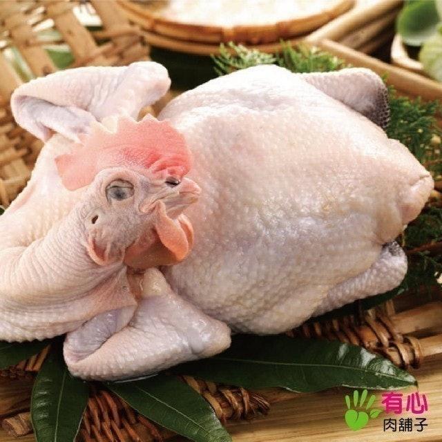 有心肉舖子 黃金土雞全雞 1
