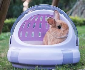 獸醫監修!推薦十大人氣兔子用外出籠【2021年最新版】 1
