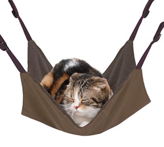 輕盈又溫暖的絨毛,適合為貓咪保暖
