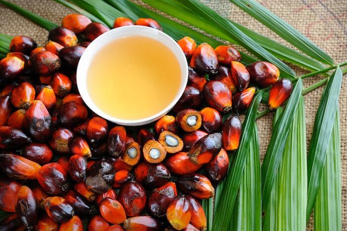 會影響起泡難易度的「棕櫚油」與「棕櫚仁油」