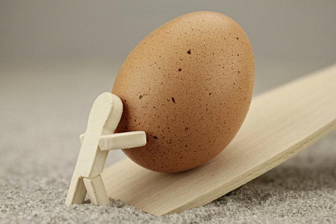 選擇能容納各種雞蛋尺寸的款式