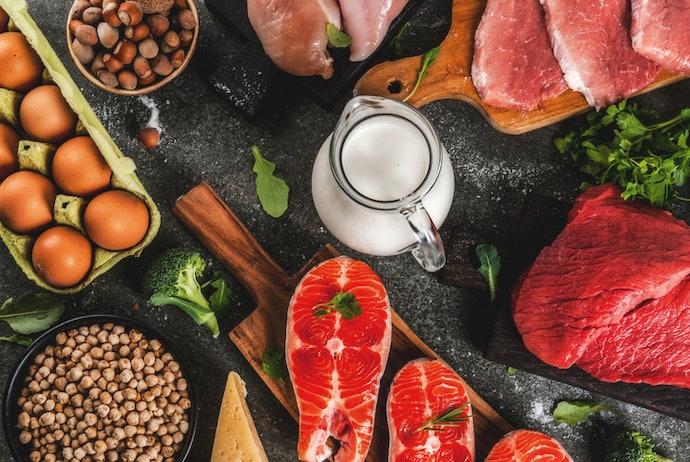 能培養強健體魄的「蛋白質」