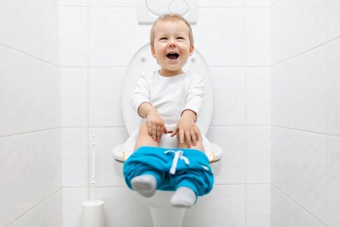 兼具輔助便座功能的款式,可用到孩子能獨立上廁所為止