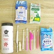 【2020日本必買實測】推薦十大貓用寵物牙刷人氣排行榜